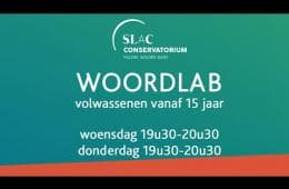 Embedded thumbnail for Woordlab